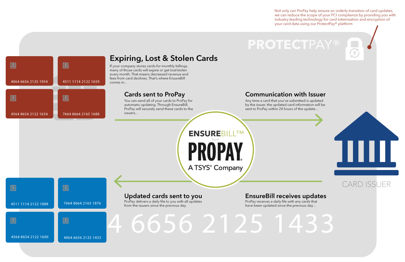 ProtectPay Infographic